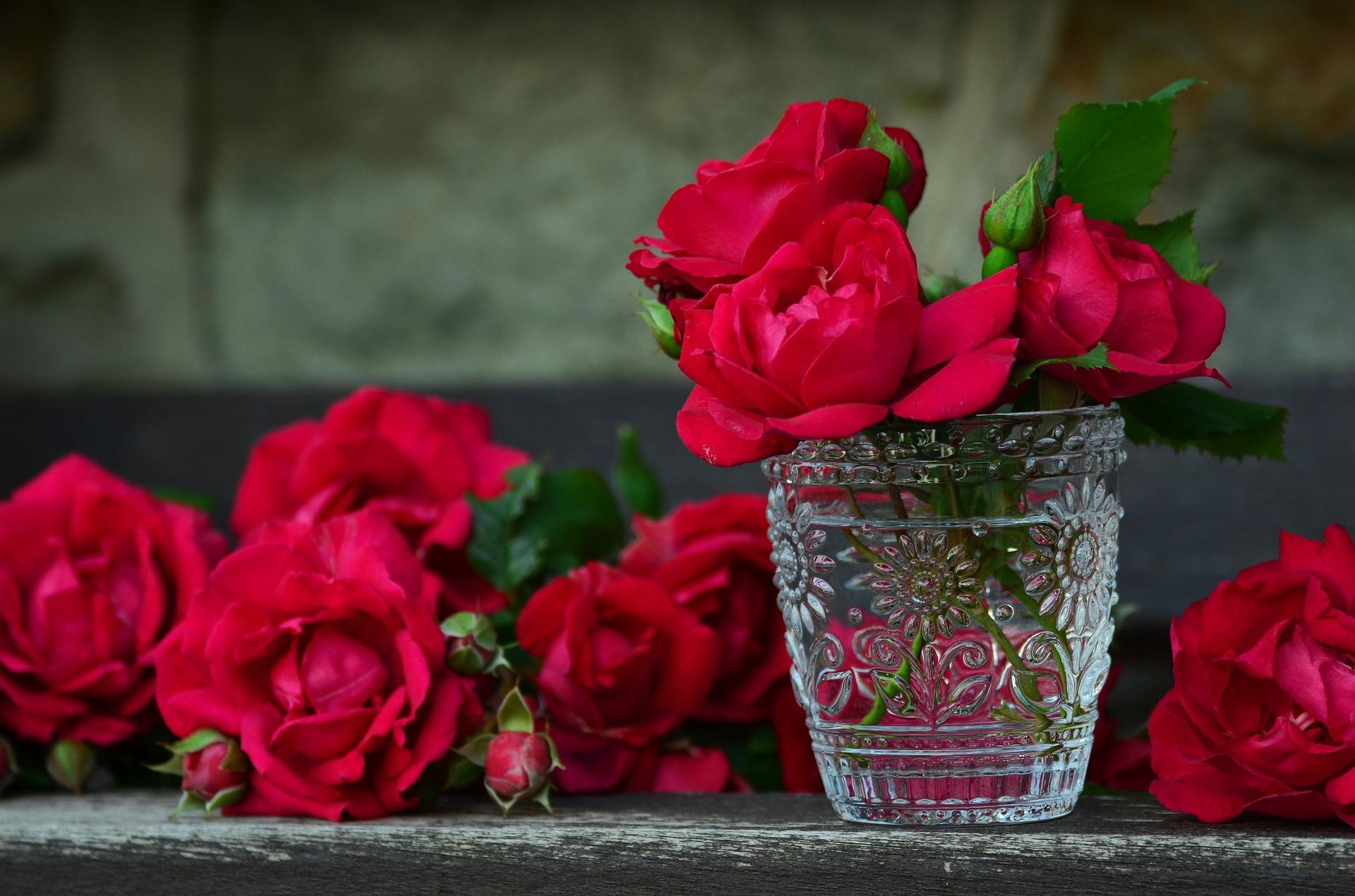 kukkia 9